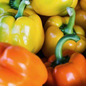 Pregnancy, Fertility, and Breastfeeding Diet: Bell Pepper