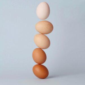 Pregnancy, Fertility, and Breastfeeding Diet: Eggs
