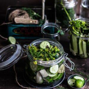 Pregnancy, Fertility, and Breastfeeding Diet: Fermented Vegetables